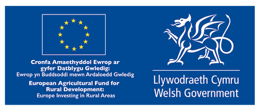 Supporting Businesses to Source, Serve and Sell Welsh Food and Drink